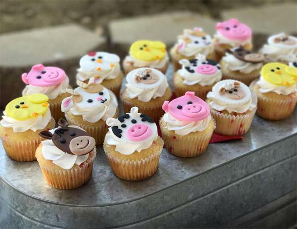 ideias de bolo fazendinha